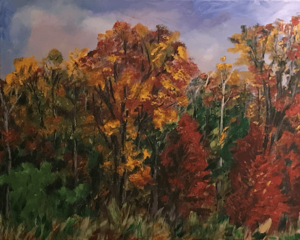 24x30 Stand of Maples
