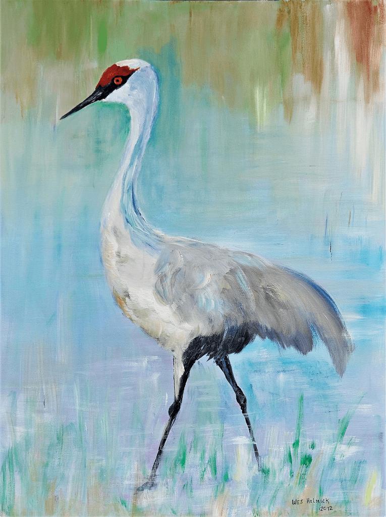 Sandhill Crane - 30x49' acrylic painting